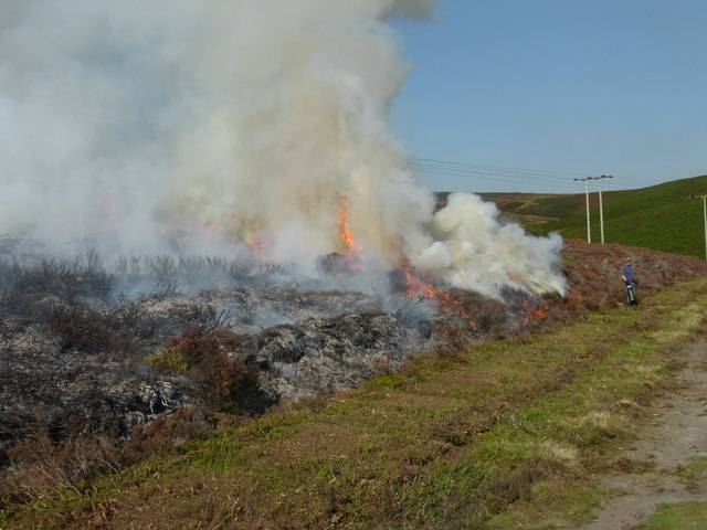 Controlled heather burn on Derwent Moor