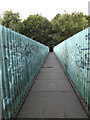 TQ6193 : Footbridge of the footpath to Priests Lane by Adrian Cable