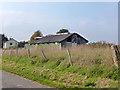 TL6146 : Decrepit shed, Cardinal's Green by Robin Webster