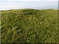 TQ4805 : Tumulus on the summit of Firle Beacon by Marathon