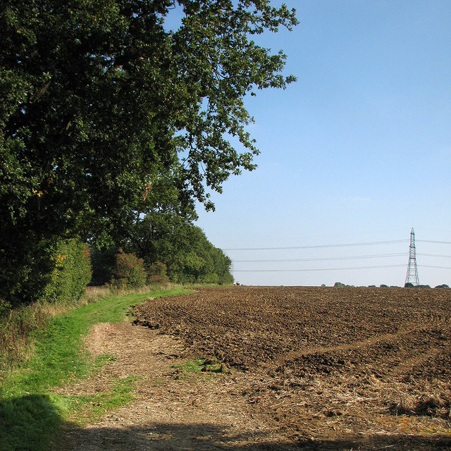 On the Icknield Way Trail