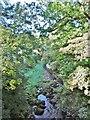 SJ9665 : Danebridge, River Dane by Mike Faherty
