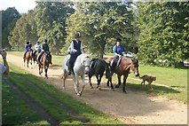 TQ2780 : View of horseriders and a dog coming up the bridleway in Hyde Park #2 by Robert Lamb