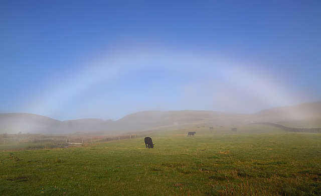 A fogbow at Dryhope