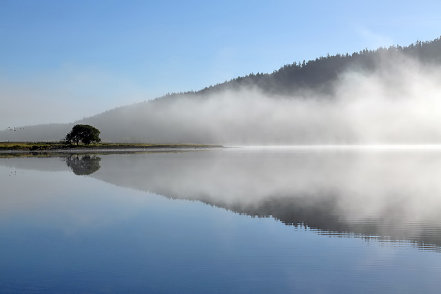 Mist rising off St Mary's Loch