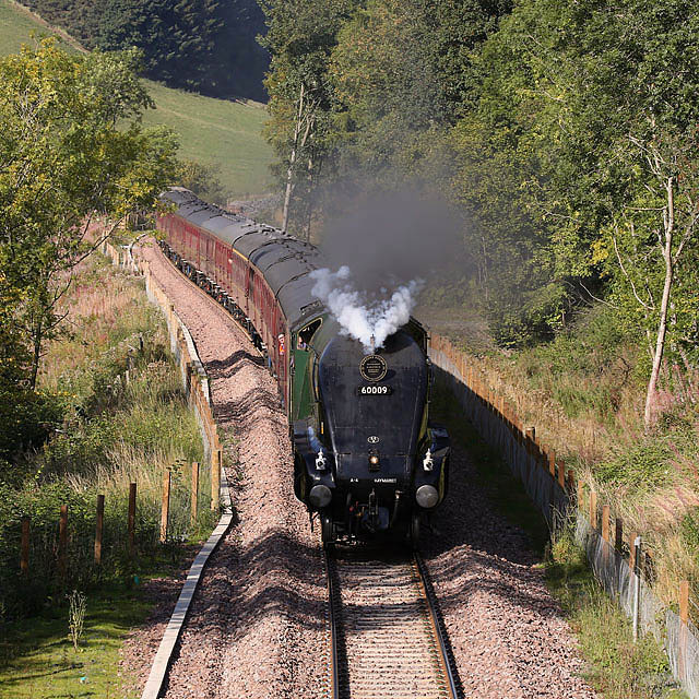 A steam special on the Borders Railway