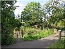 NY6565 : Footbridge over Tipalt Burn near Thirlwall by Andrew Curtis