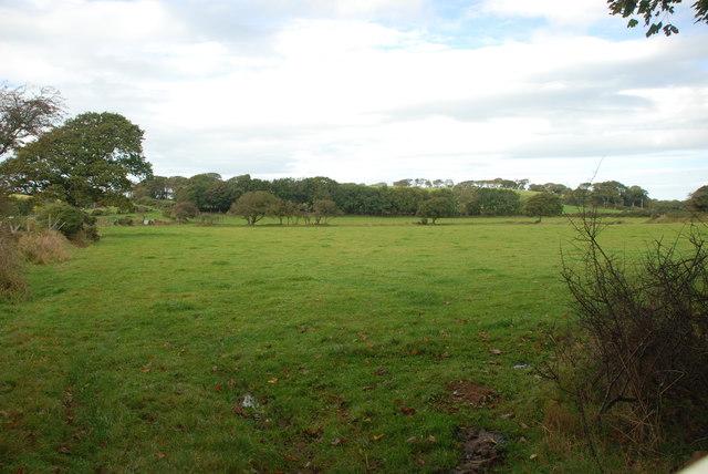 Tir amaethyddol ger Rhyllech - Farmland near Rhyllech