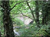 SK1984 : River  Derwent  and  Yorkshire  Bridge by Martin Dawes