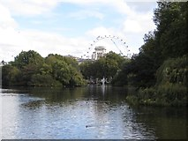 TQ2979 : St James's Park Lake by James Wood