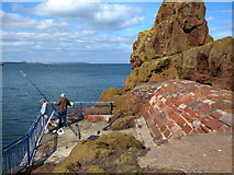 NT6779 : Dunbar: A precarious angler by Dr Neil Clifton