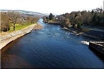 NN9357 : Pitlochry, river Tummel by Robert Murray