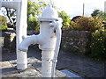 SN1812 : Tavernspite - 2 old village water pumps - detail by welshbabe