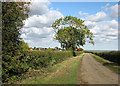 TL3462 : On Battle Gate Road by John Sutton