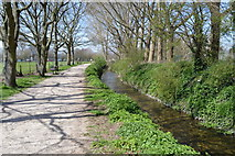 SU8504 : New Lipchis Way and River Lavant by N Chadwick