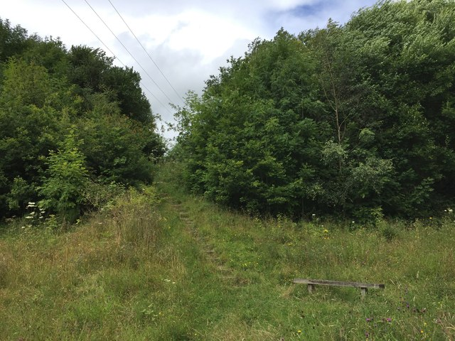 Bateswood SWT Reserve: steps up to the plateau