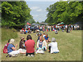 """SP9210 : Picnicking in Tring Park during """"Fun in the Park"""" by Chris Reynolds"""