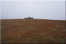 NY6834 : Cross Fell Summit by Ian S