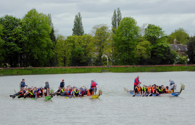 Dragon boat racing at Himley Hall, Staffordshire