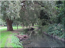 TQ2992 : Pymme's Brook in Arnos Park by Mike Quinn