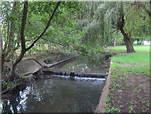 TQ2992 : Weir on Pymme's Brook in Arnos Park (3) by Mike Quinn