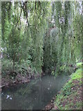 TQ2992 : Pymme's Brook in Arnos Park (5) by Mike Quinn