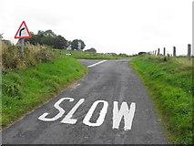 H5572 : Stoneleigh Road by Kenneth  Allen