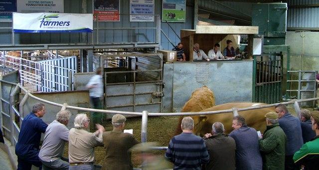 Ludlow Livestock Market