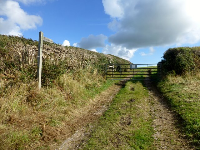 Footpath To Roosecote Moss