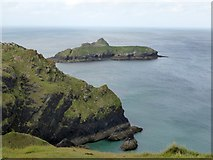 SW6617 : Mullion Island and the cliff at Laden Ceyn by David Smith