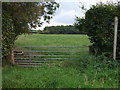 NY4449 : Field entrance and footpath off the A6 by JThomas