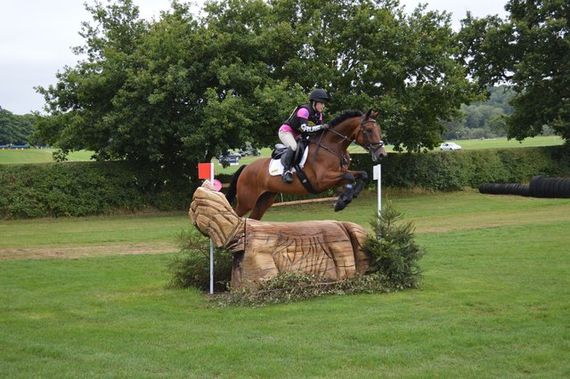 Somerford Park Horse Trials: cross-country