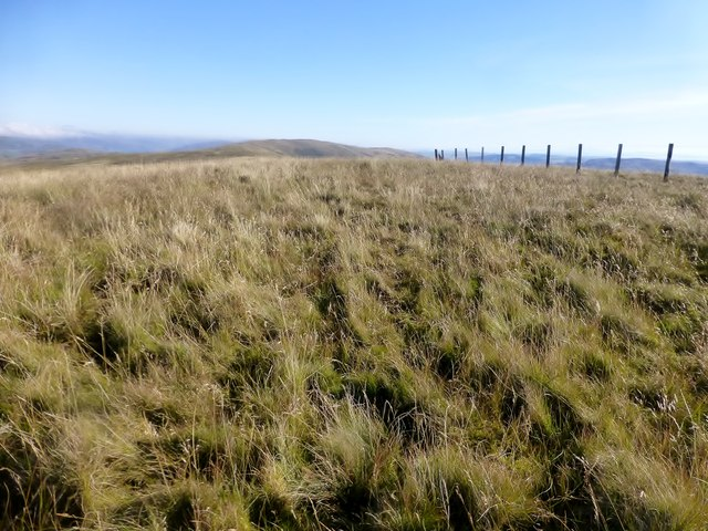 Turner Cleuch Law