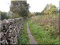 SE0649 : Footpath - Silsden Road by Betty Longbottom