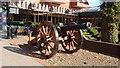 SP3076 : Cannon Park's Cannon by Jack FitzSimons