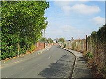 SO9988 : Mill Lane, Langley by David Weston