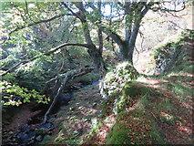 NR6713 : Allt Dearg above Ballybrennan by John Ferguson