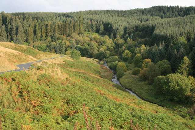 Kershope Burn and Forest