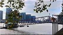 TQ2977 : River Thames from Pimlico Gardens by PAUL FARMER