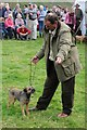 NY1808 : Border terrier classes, Wasdale Head Show by Philip Halling