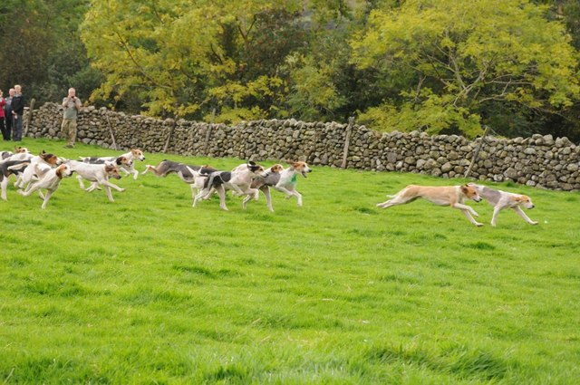 Trailhounds at Wasdale Head Show