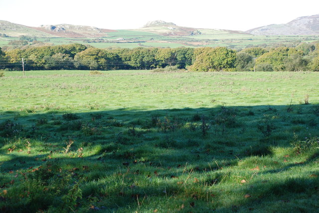 Cae ger Wern Fawr - Field near Wern Fawr