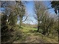 SX2283 : Slopes of the Inny valley by Derek Harper