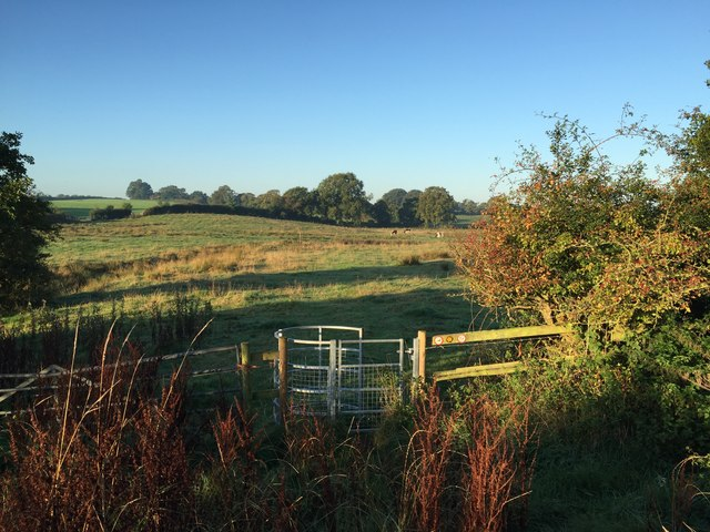 Kissing gate on field path south of Audley