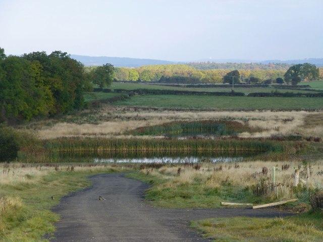 Ponds near Peigh Hills