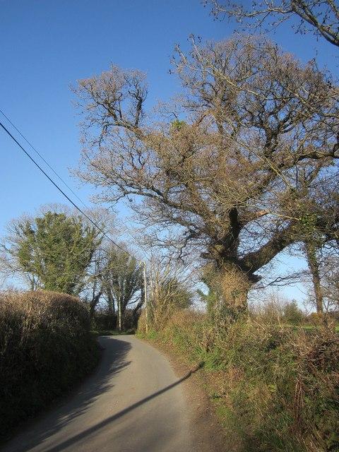 Lane at Stonaford