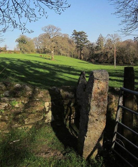 Gateposts, wall and field, Stonaford