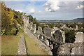 SJ0565 : Denbigh Town Walls by Jeff Buck