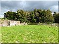 TQ7515 : Duchess of Cleveland's walled garden at Battle Abbey by PAUL FARMER
