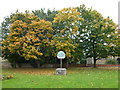 TL3776 : The village green in Colne, Cambridgeshire by Richard Humphrey